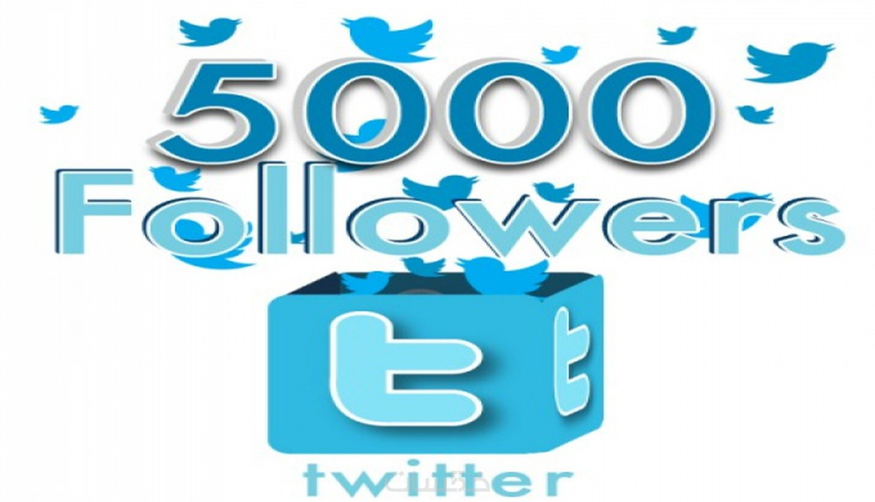 سأضيف لك 5000 متابع عربي / خليجي لحسابك في تويتر